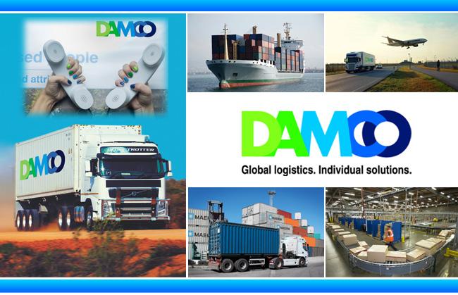 Các lĩnh vực cung ứng của công ty DAMCO