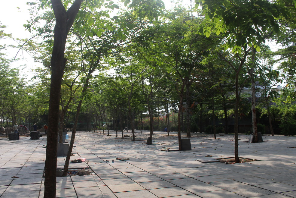 Trường Đại học Công nghệ Đồng Nai: Xây dựng không gian xanh sáng tạo cho sinh viên
